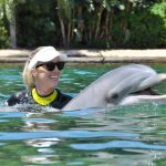 Swim with the Dolphins at Discovery Cove