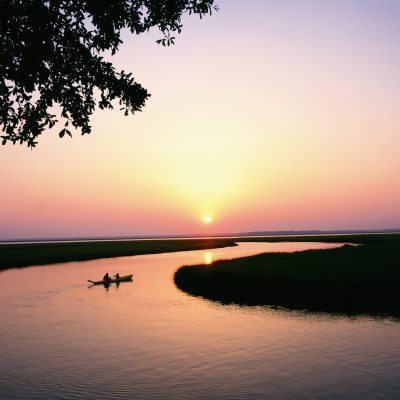 5 Fun Things to Do in Amelia Island