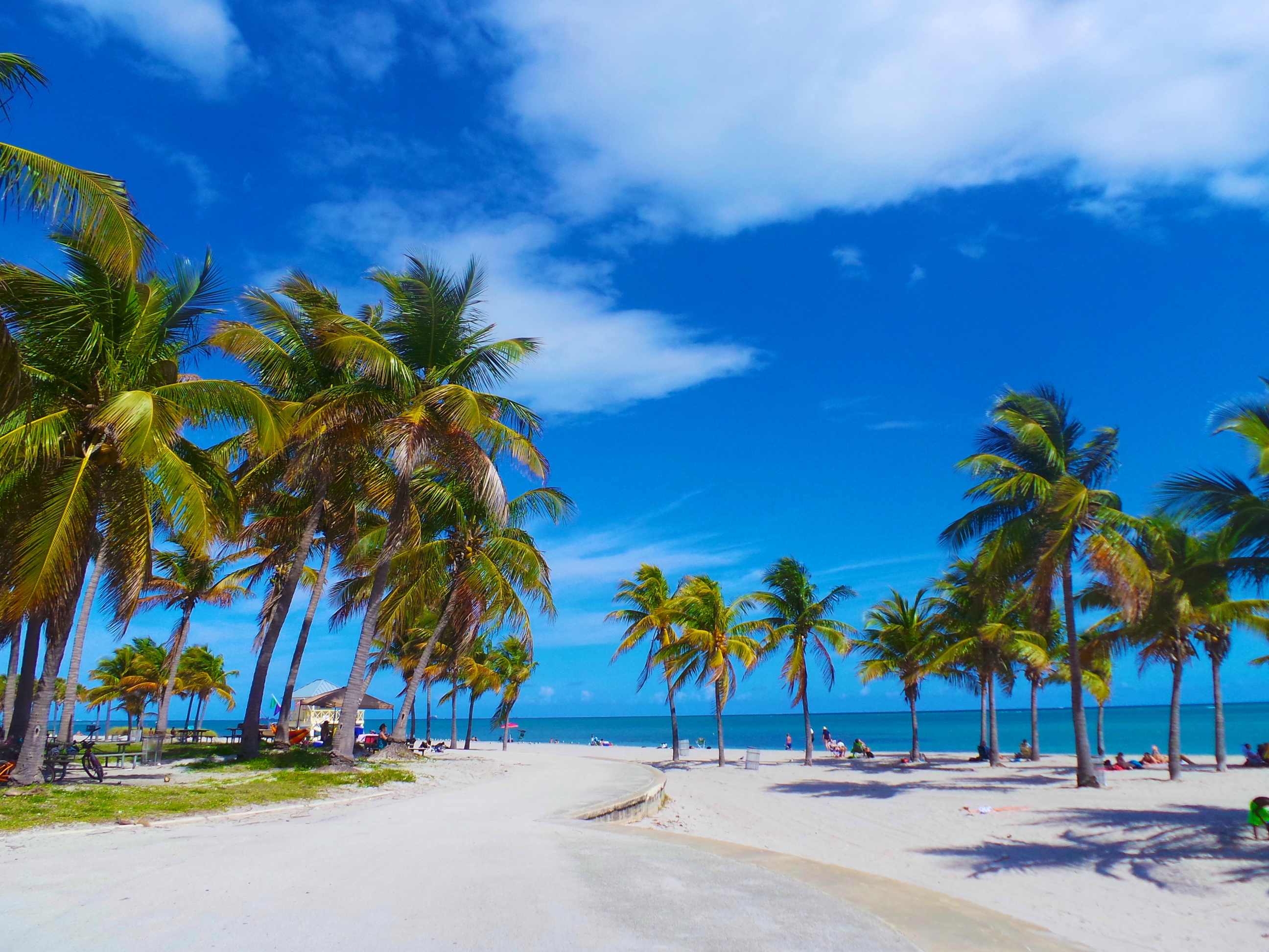 How To Go To Biscayne National Park From Miami Beach